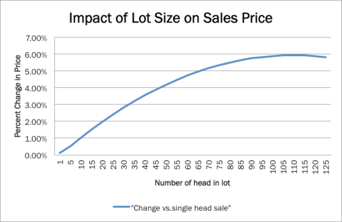 Figure 4. Effect of lot size on sales price. Source: ?Factors Affecting Feeder Cattle Prices in Kansas and Missouri.? Kansas State University Extension 2010.