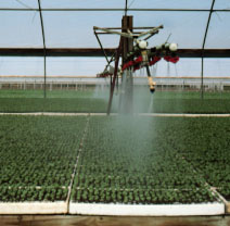 Figure 5. 