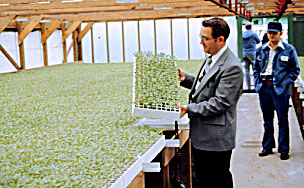 Figure 9. 