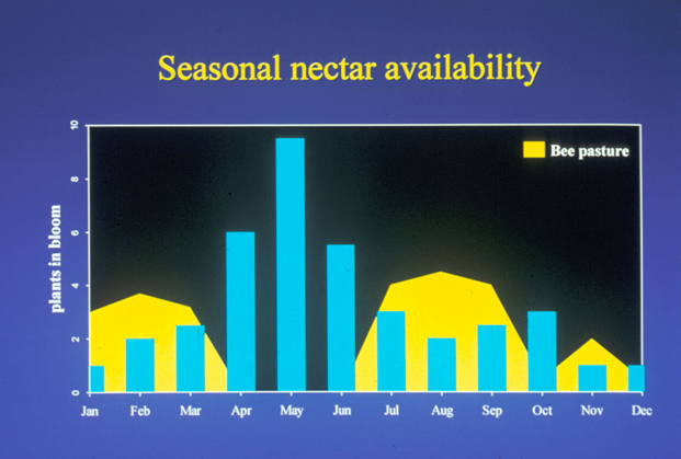 Seasonal nector availability bottom