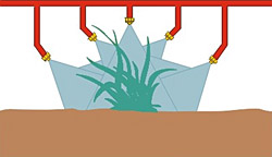 Figure 44. Use drop nozzles as plants grow