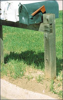 Mound by mailbox