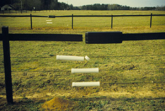 Fences For Horses Uga Cooperative Extension