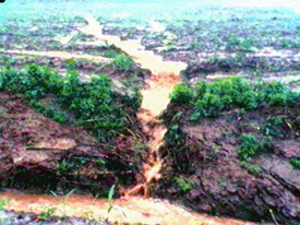 Erosion is especially 
