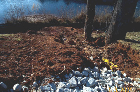 Photo of eroding slope that is by a pond