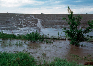 Figure   8. Water (left) and wind (right) can dislodge and move soil from its original   location. This dislocated soil is the source of sediment that causes pollution   of water bodies. <em>Photos from USDA-NRCS.</em>