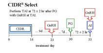 CIDR Select