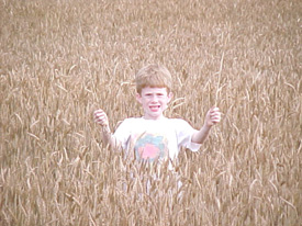The boy's hair is almost identical to the color of the wheat field surrounding him. In this case, low contrast and low color ruin the good composition.