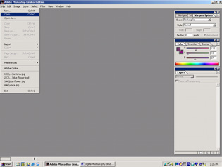 Screenshot of Adobe Photoshop LE showing main menu and palettes.
