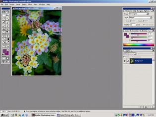 screen shot showing opened image in program