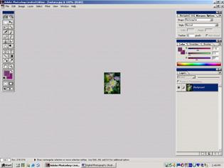 screen shot showing image after adjusting print size