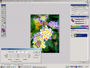 screen shot showing how to adjust color balance
