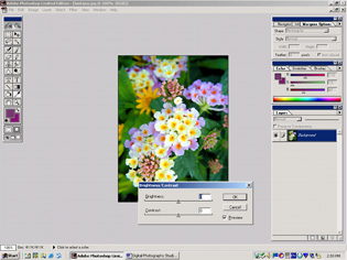 screen shot showing how to adjust brightness and contrast