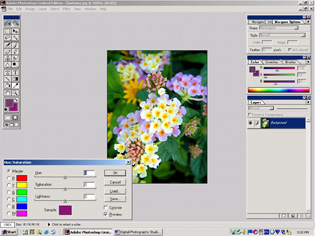 screen shot showing how to adjust hue and saturation