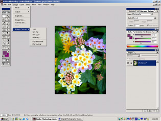 screen shot showing how to rotate image