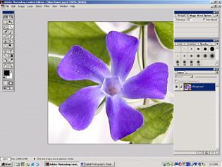 screen shot showing selected pixels