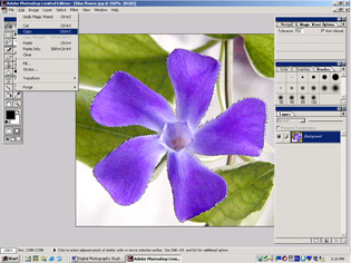 screen shot showing how to copy selection