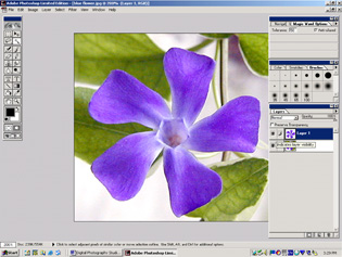 screen shot showing new layer