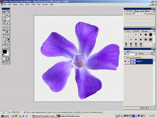 screen shot showing image after background layer is deleted
