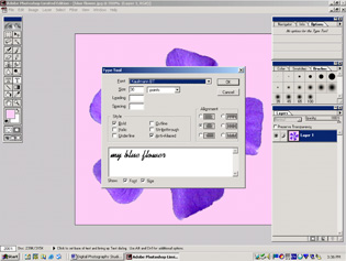 screen shot showing type tool window
