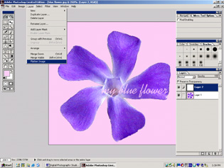 screen shot showing how to flatten image