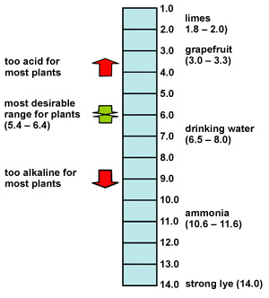diagram showing acidity and alkilinity for loime, grapfuit, water, ammonia and lye on pH scale