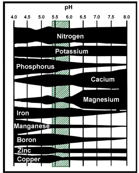 diagram showing availability of nutrients at different pH levels