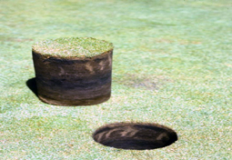 Black layer due to high soil moisture and compaction.</strong> [Photo: Lee Burpee]