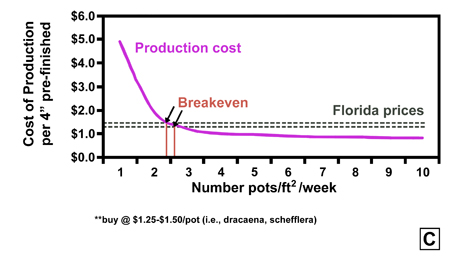 Economic analysis of cost of production for growers using unrooted cuttings (A), rooted cuttings (B) and small-size pots (C) as a starting material.