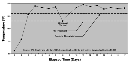 Line graph showing temperature increase in a two stage composter over time. The fly threshold is between 100 and 120 degrees fahrenheit. The bacteria threshold is silightly above 125 degrees.  When compost is turned at 8 days, there is significant drop in temperature. The max temperature shown is about 150 degrees. The minimum temperature shown is about 50 degrees.