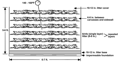 SIde-view diagram of layers in a compost pile. The pile is 6-7 feet wide and 5-6 feet high. An impermeable foundation is the on the lowermost level. On top of that is a 10-12 inch litter base layer. Then a single layer of birds is alternated with 6-8 inches of litter. Finally there is 10-12 inches of litter covering the pile. Also of note is the 6-8 inched of space between the bird carcasses and the sidewall.