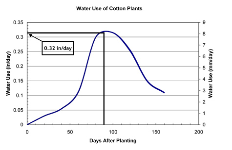 Graph showing water used by cotton x days aftering planting.