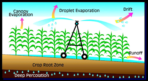 illustration showing canopy evaporation, droplet evaporation, drift, and runoff as inefficiences.
