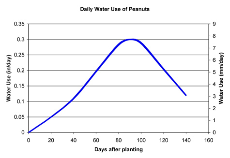 Graph showing water used by peanuts x days aftering planting.