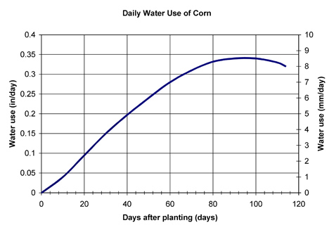 Graph showing water used by cornn x days aftering planting.
