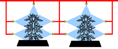Drawing demonstrating five nozzles spraying larger plants