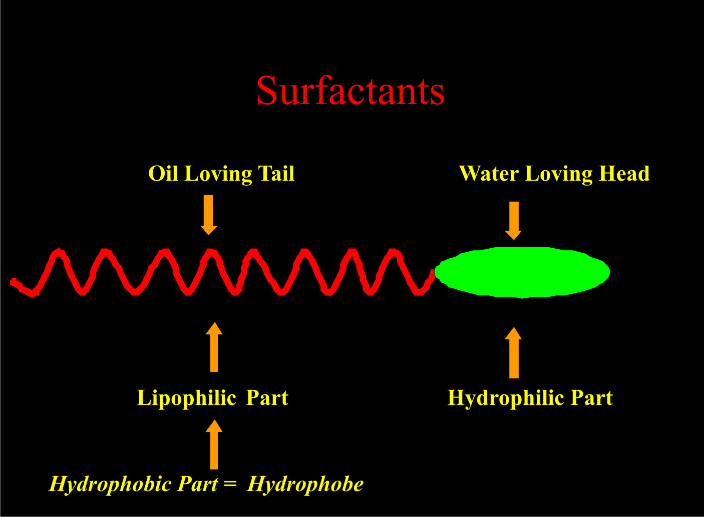 Components of a surfactant molecule