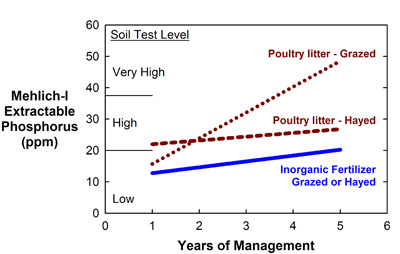 Fertilizer source and management effects