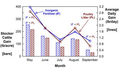 Stocker cattle gain and average daily gain on Coastal bermudagrass