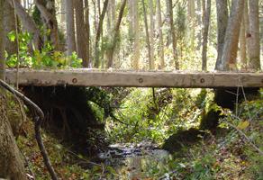 Wood crossing