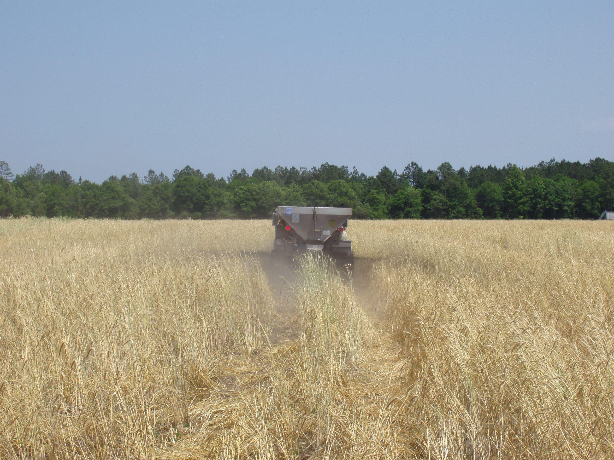 Biosolids application on cropland