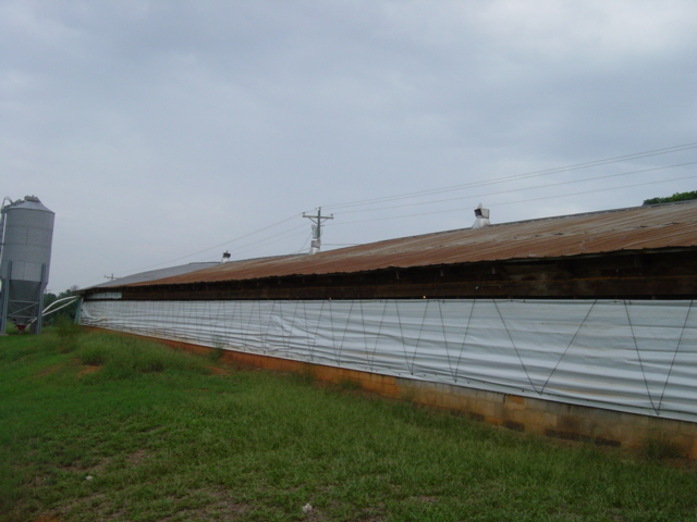 Figure 27. Poultry house with possible truss damage