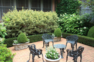 Figure 6. A monochromatic color scheme using green as a base color. Whites and various shades of green create a subtle and soothing garden space.