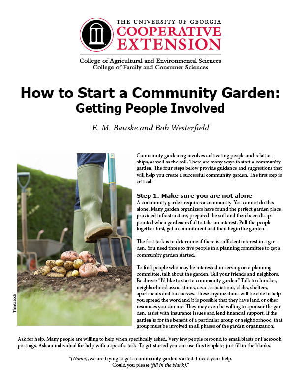 How to Start a Community Garden Getting People Involved UGA