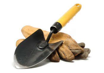 trowel and gloves