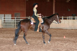 Figure 10: Horse with incorrect frame;