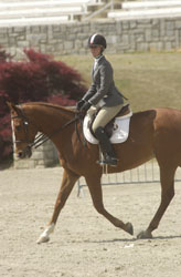 Figure 17: Correct position