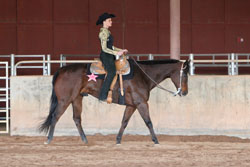 Figure 19: Correct hand and arm placement