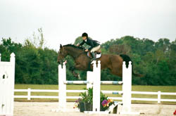 Figure 20: Rider demonstrating