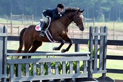 Figure 6: Incorrect front leg